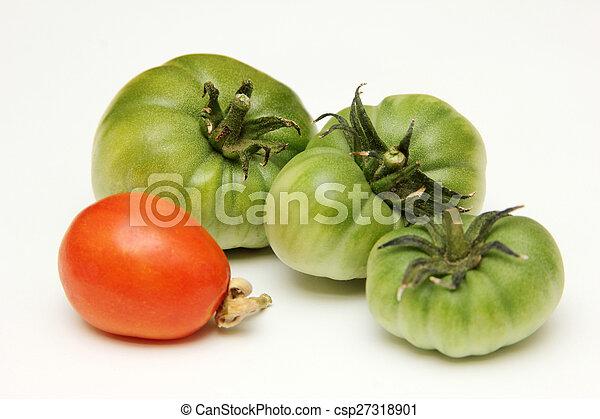 Tomato - csp27318901