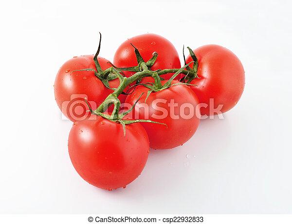 Tomato - csp22932833