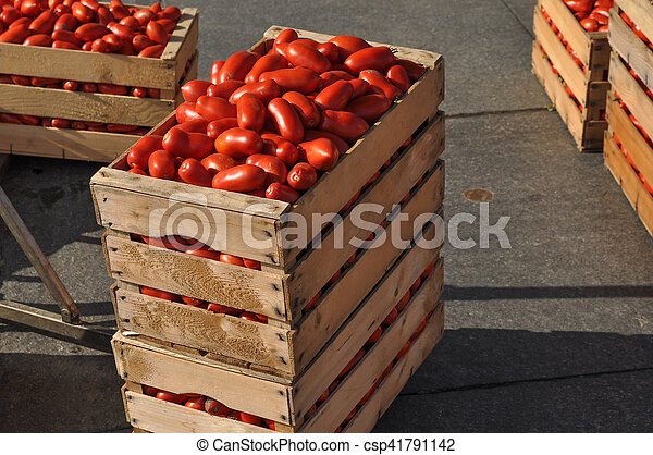 Tomato vegetables in a crate - csp41791142