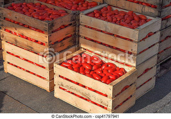 Tomato vegetables in a crate - csp41797941