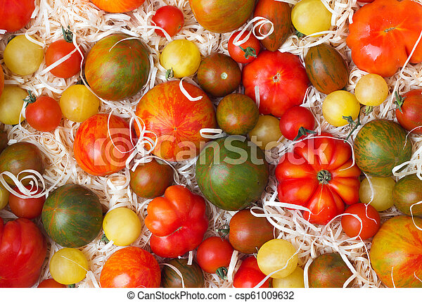 tomatoes in sawdust - csp61009632