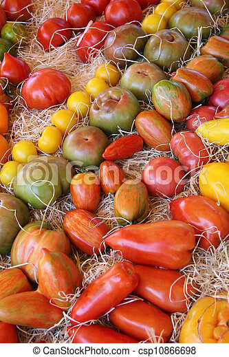 Tomatoes in various colors and shapes - csp10866698