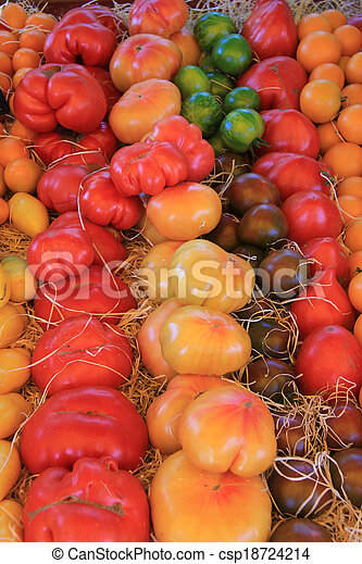 Tomatoes in various colors - csp18724214