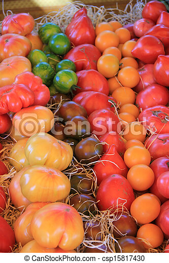 Tomatoes in various colors - csp15817430
