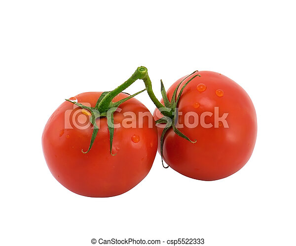 Tomatoes on a branch - csp5522333