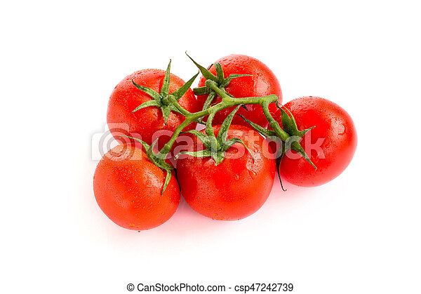 Tomatoes on white background - csp47242739
