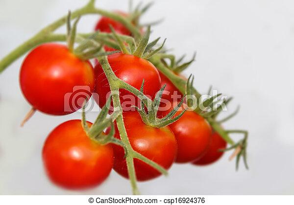 tomatoes - csp16924376