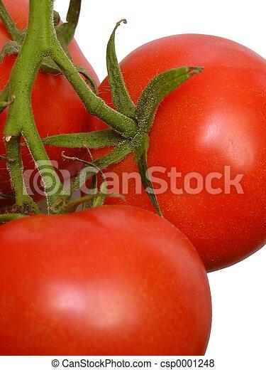 Tomatoes - csp0001248