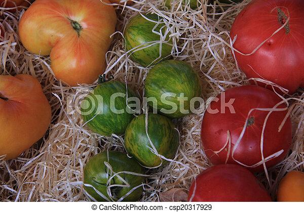 Tomatoes - csp20317929