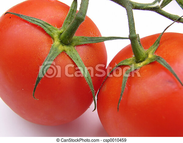 tomatoes - csp0010459