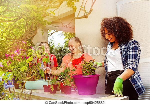 tonåring, plantande, flickor, tre, utomhus, blomningen, lycklig - csp60425882