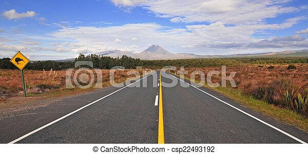 Tongariro National Park New Zealand - csp22493192