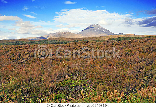 Tongariro National Park New Zealand - csp22493194