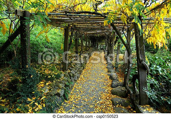 Tonnelle, jardin japonais.