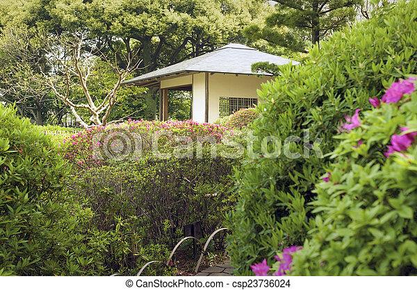 Tonnelle, parc. Été, tonnelle, jardin, scénique, parc, japonaise, temps.
