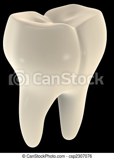 tooth - csp2307076