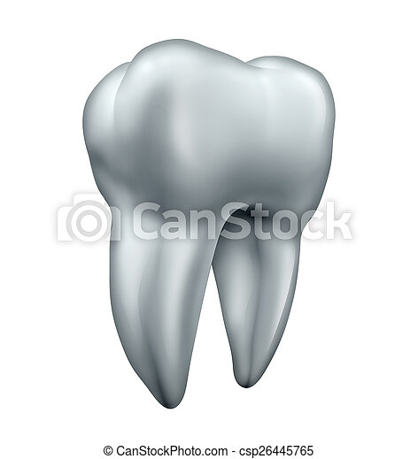 Tooth - csp26445765