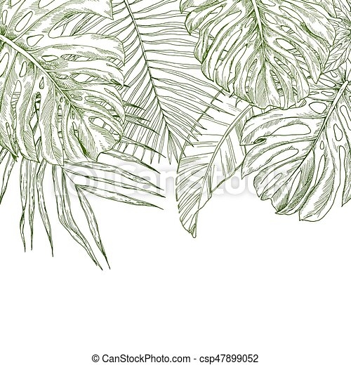 Rainforest Leaves Template Top border compo...