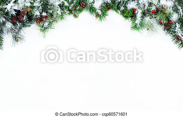 Christmas Top Border.Top Border Of Snowy Christmas Tree Evergreen Branches On A White Background