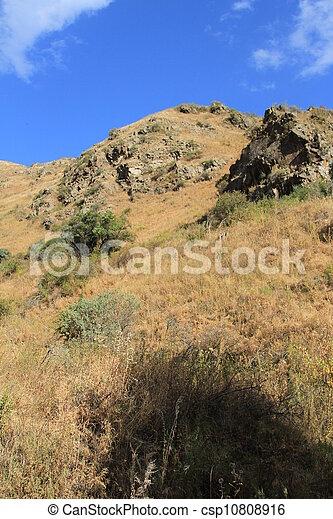 top of the mountain - csp10808916