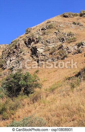 top of the mountain - csp10808931