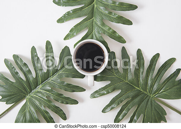 Top view flat lay of coffee cup with green leaves on white background. - csp50008124