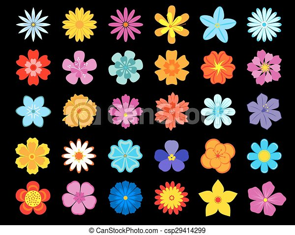 Top View Of Colorful Blooming Flowers Vector