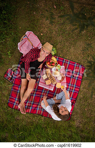 top view of couple enjoying picnic time - csp61619902