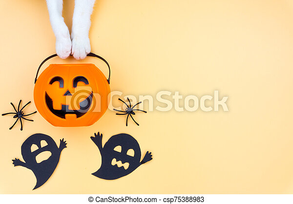 Top view of Halloween decoration, A hand of cat holding jack o lantern, ghost and spider on yellow background with copy space for text. halloween concept. - csp75388983