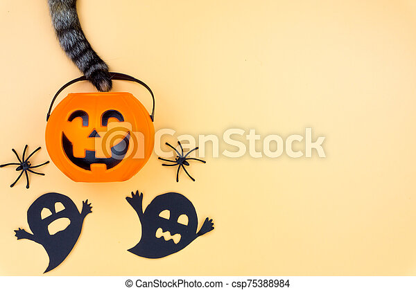 Top view of Halloween decoration, A tail of cat grab jack o lantern, ghost and spider on yellow background with copy space for text. halloween concept. - csp75388984