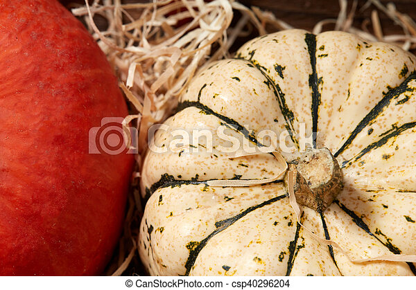 Top view of table with two pumpkins - csp40296204