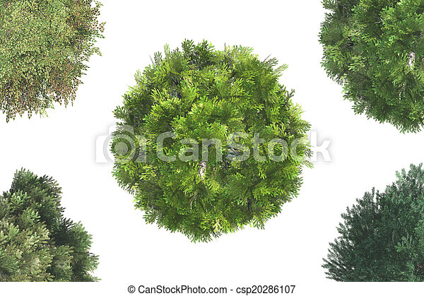 Top View of Trees - csp20286107