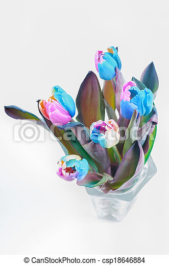 Top view on multi colored tulips - csp18646884