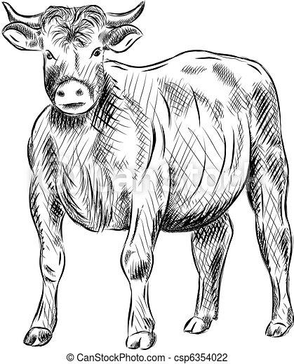 Toro - csp6354022