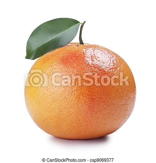 Fruta - csp9069377