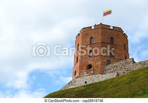 Torre de gediminas, Vilnius, Lituania - csp28918748