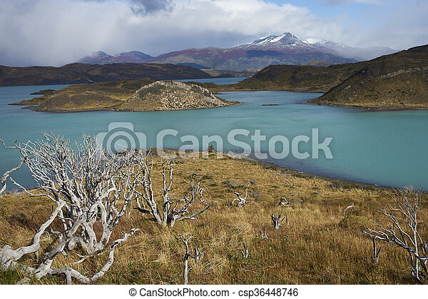 Torres del Paine National Park - csp36448746