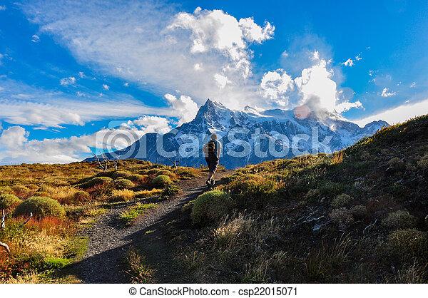 torres, paine, parque, nacional, del, chile, trecken - csp22015071
