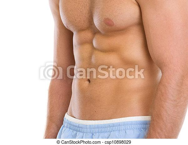 torso, músculos, primer plano - csp10898029