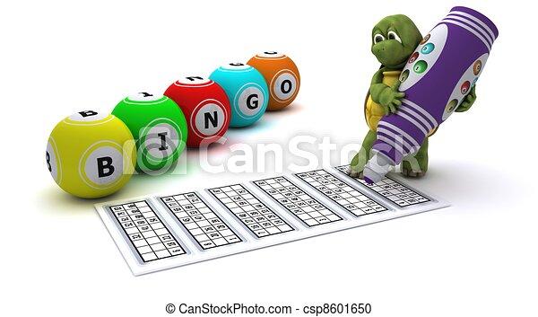 Tortoise playing bingo - csp8601650