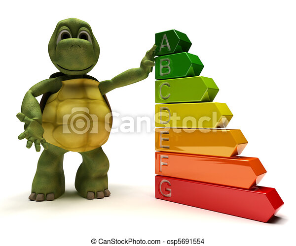 Tortoise with energy ratings - csp5691554