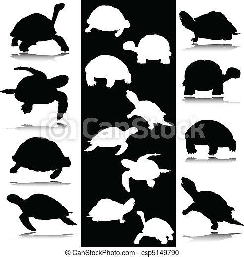 Tortue blanc vecteur noir tortue silhouettes vecteur noir blanc - Clipart tortue ...
