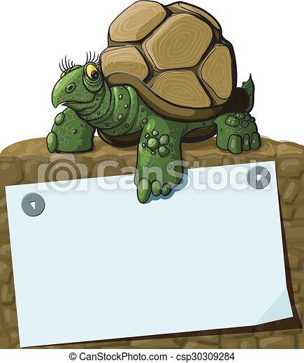 tortue, intelligent - csp30309284