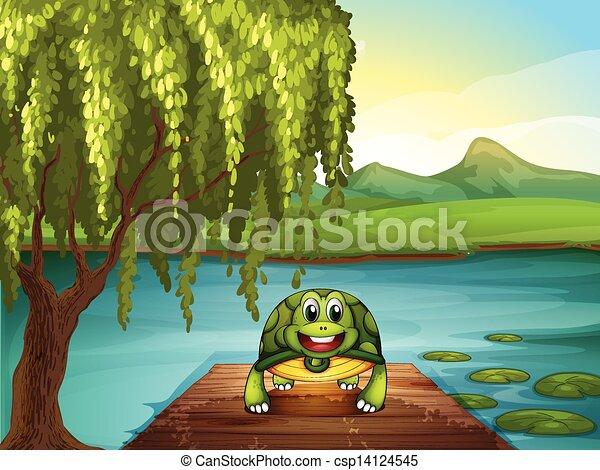 Una tortuga sonriente a lo largo del estanque - csp14124545