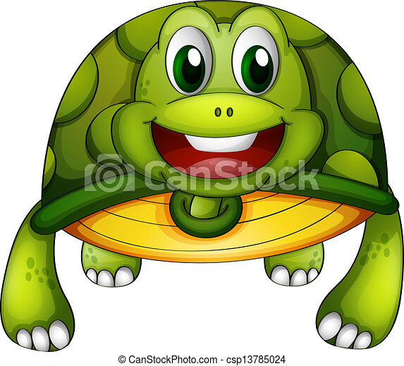 Una tortuga verde - csp13785024