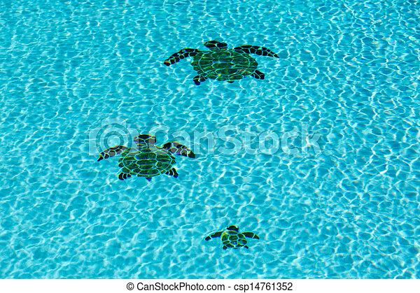 Tortugas fondo tres embaldosado piscina nataci n for Piscina para tortugas