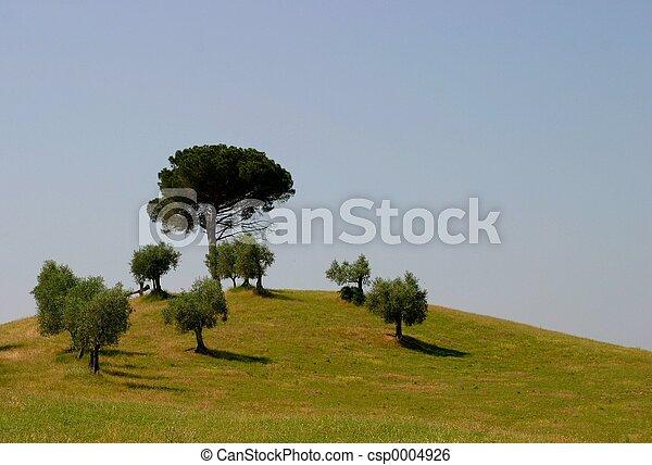 Toscane - csp0004926