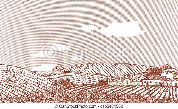 toscano, scena, paesaggio - csp5434582
