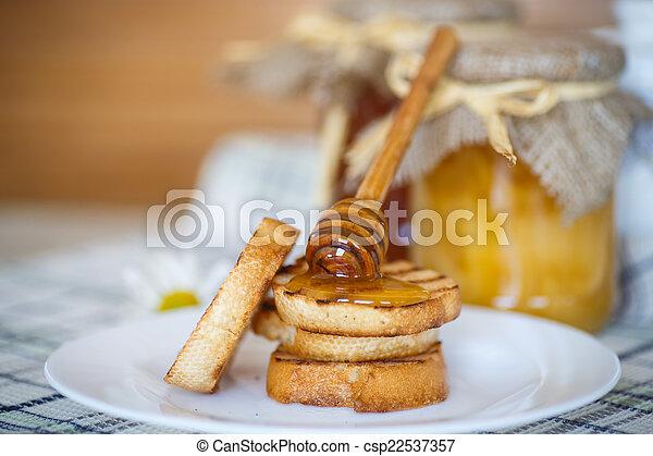 Tostadas con miel - csp22537357
