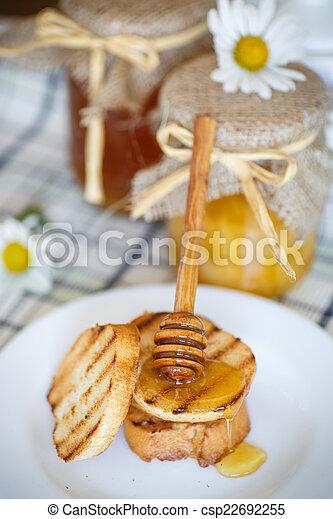 Tostadas con miel - csp22692255